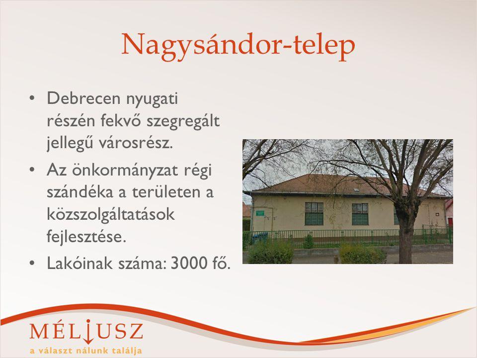 Nagysándor-telep Debrecen nyugati részén fekvő szegregált jellegű városrész. Az önkormányzat régi szándéka a területen a közszolgáltatások fejlesztése