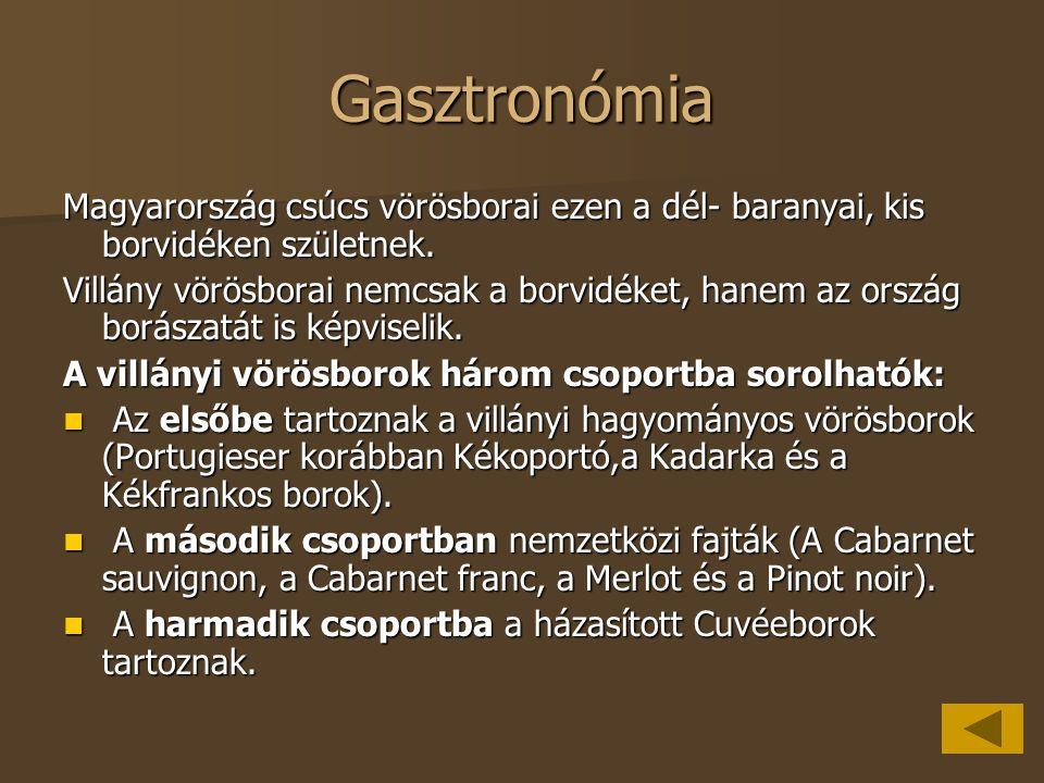 Gasztronómia Magyarország csúcs vörösborai ezen a dél- baranyai, kis borvidéken születnek. Villány vörösborai nemcsak a borvidéket, hanem az ország bo