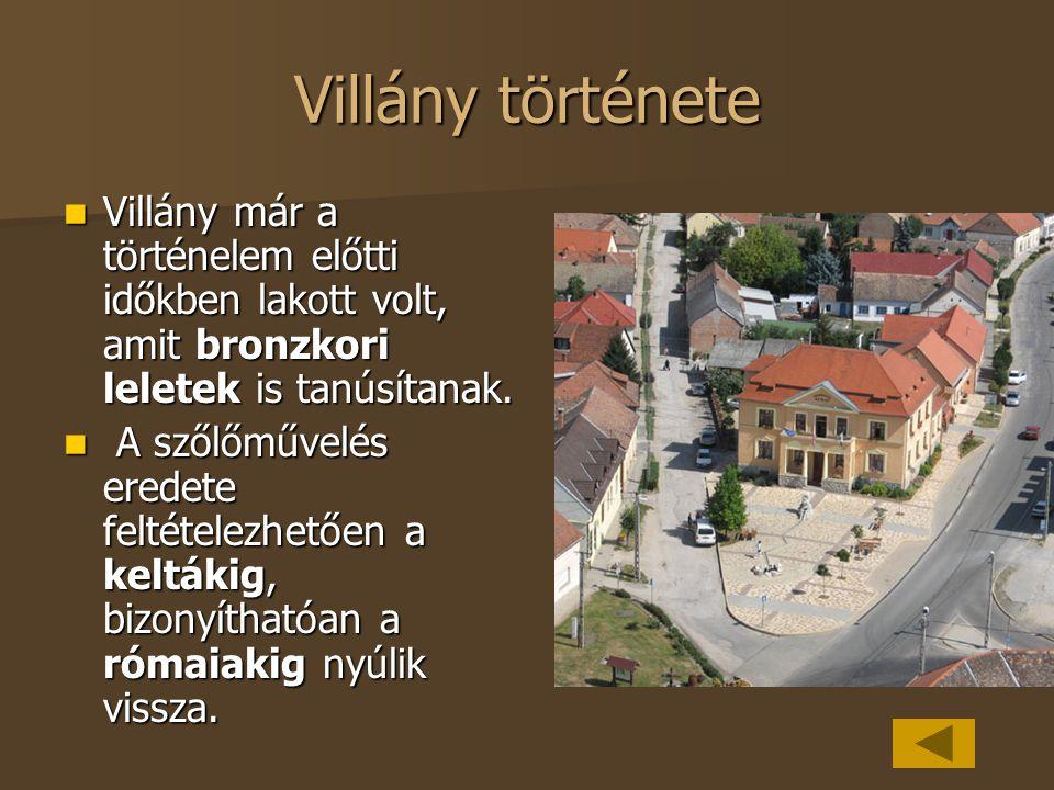 Villány története Villány már a történelem előtti időkben lakott volt, amit bronzkori leletek is tanúsítanak. Villány már a történelem előtti időkben
