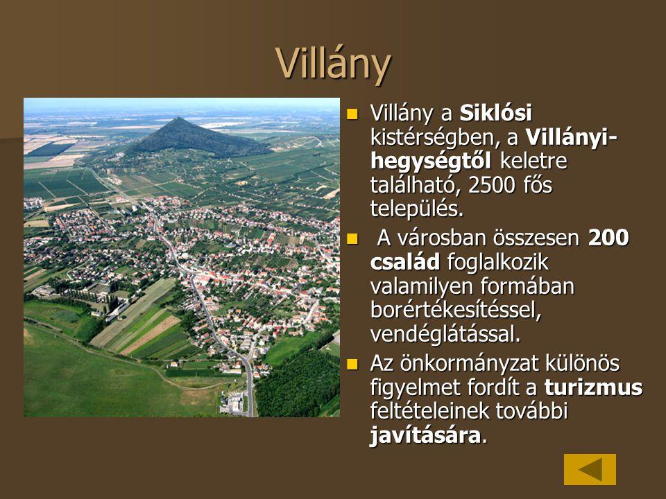 Villány Villány a Siklósi kistérségben, a Villányi- hegységtől keletre található, 2500 fős település. Villány a Siklósi kistérségben, a Villányi- hegy
