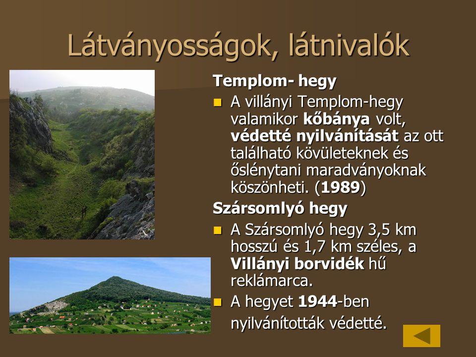 Látványosságok, látnivalók Templom- hegy A villányi Templom-hegy valamikor kőbánya volt, védetté nyilvánítását az ott található kövületeknek és őslény
