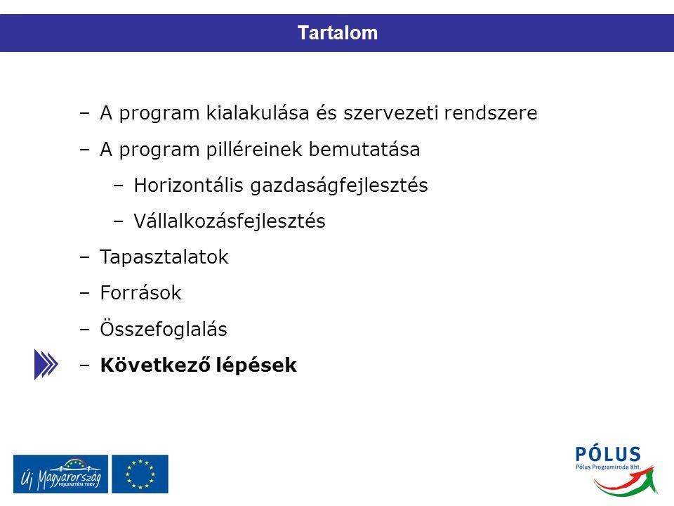 Tartalom –A program kialakulása és szervezeti rendszere –A program pilléreinek bemutatása –Horizontális gazdaságfejlesztés –Vállalkozásfejlesztés –Tap
