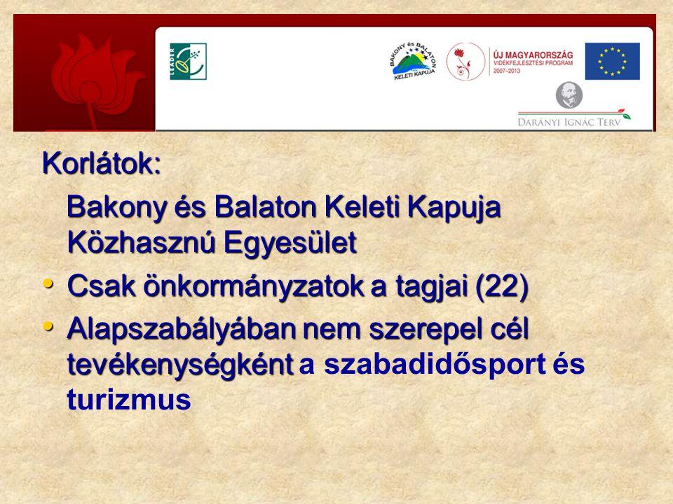 Korlátok: Bakony és Balaton Keleti Kapuja Közhasznú Egyesület Bakony és Balaton Keleti Kapuja Közhasznú Egyesület Csak önkormányzatok a tagjai (22) Csak önkormányzatok a tagjai (22) Alapszabályában nem szerepel cél tevékenységként Alapszabályában nem szerepel cél tevékenységként a szabadidősport és turizmus
