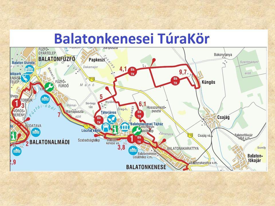 """Jelen helyzet Korlát: Túl nagy a terület Túl nagy a terület Nem szerepelnek benne az általunk preferált települések, nem a Balatonról """"szól Nem szerepelnek benne az általunk preferált települések, nem a Balatonról """"szól"""