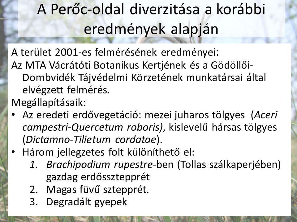 A Perőc-oldal diverzitása a korábbi eredmények alapján A terület 2001-es felmérésének eredményei : Az MTA Vácrátóti Botanikus Kertjének és a Gödöllői-
