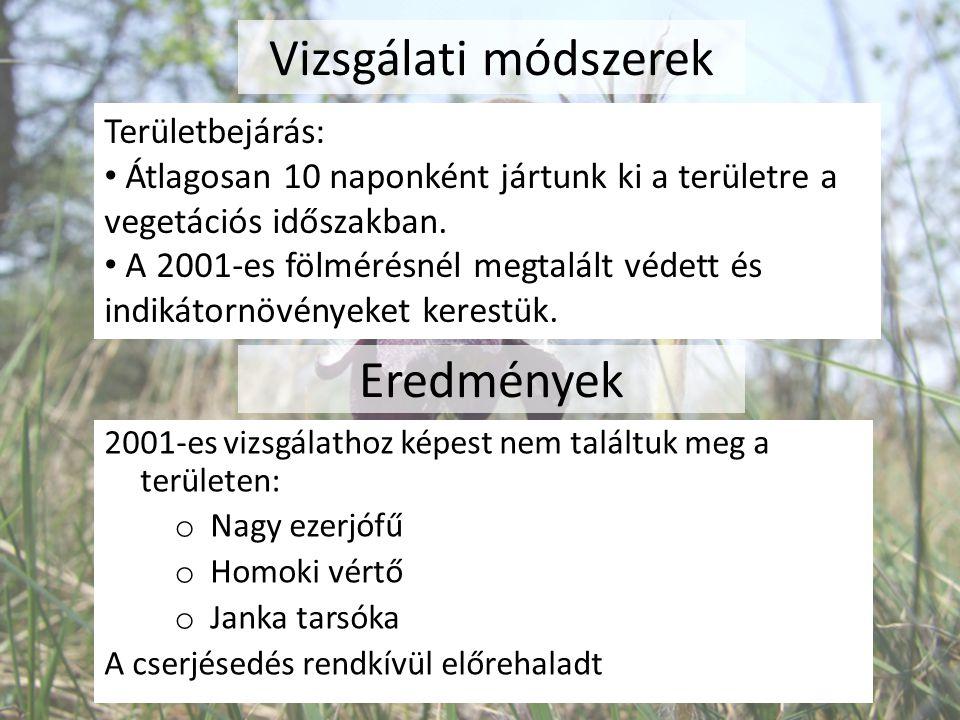 Vizsgálati módszerek Területbejárás: Átlagosan 10 naponként jártunk ki a területre a vegetációs időszakban. A 2001-es fölmérésnél megtalált védett és