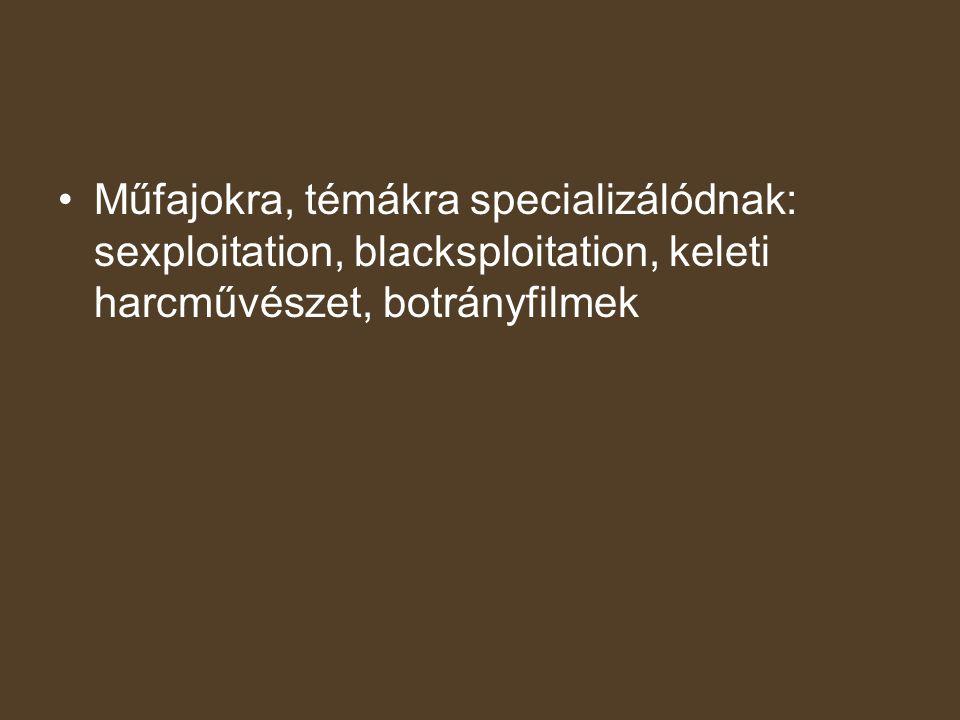 Műfajokra, témákra specializálódnak: sexploitation, blacksploitation, keleti harcművészet, botrányfilmek