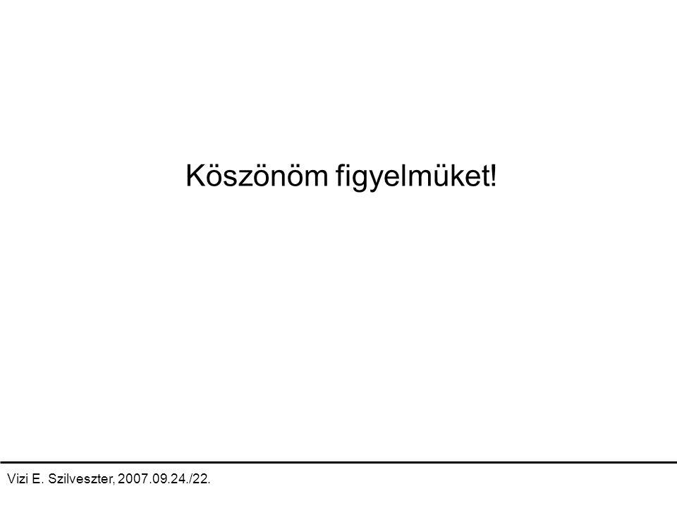 Vizi E. Szilveszter, 2007.09.24./22. Köszönöm figyelmüket!