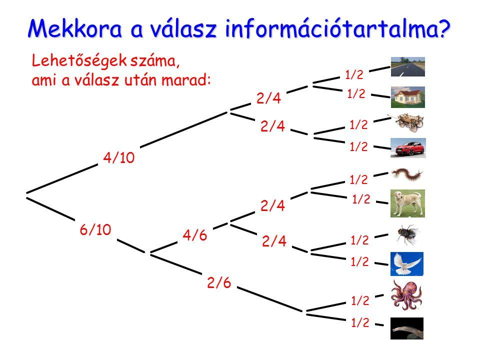 Mekkora a válasz információtartalma? Lehetőségek száma, ami a válasz után marad: 4/10 6/10 2/6 4/6 2/4 1/2