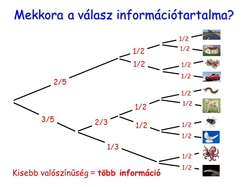 Mekkora a válasz információtartalma? Kisebb valószínűség = több információ 2/5 3/5 1/3 2/3 1/2