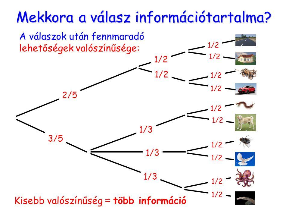 Mekkora a válasz információtartalma? A válaszok után fennmaradó lehetőségek valószínűsége: 2/5 3/5 1/3 1/2 1/3 1/2 Kisebb valószínűség = több informác