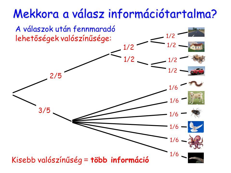 Mekkora a válasz információtartalma? 2/5 3/5 1/6 1/2 1/6 1/2 1/6 A válaszok után fennmaradó lehetőségek valószínűsége: Kisebb valószínűség = több info