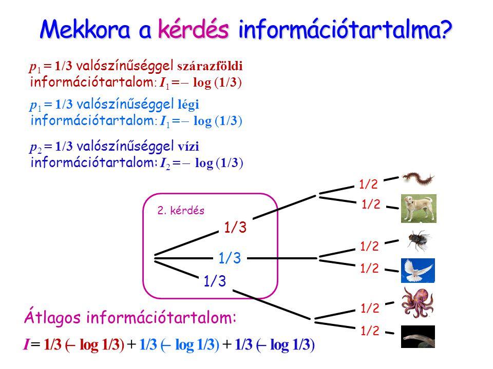 Mekkora a kérdés információtartalma? 2. kérdés p 1 = 1/3 valószínűséggel szárazföldi információtartalom : I 1 = ̶ log (1/3) p 2 = 1/3 valószínűséggel
