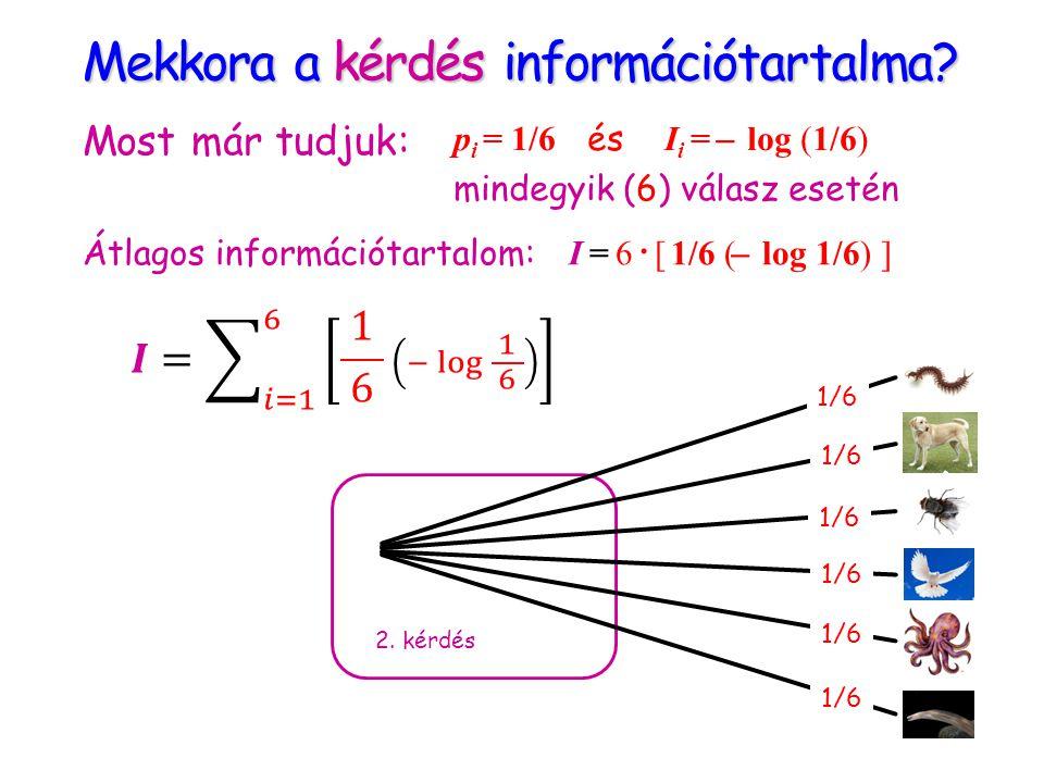 Mekkora a kérdés információtartalma? 2. kérdés Most már tudjuk: p i = 1/6 és I i = ̶ log (1/6) mindegyik (6) válasz esetén Átlagos információtartalom: