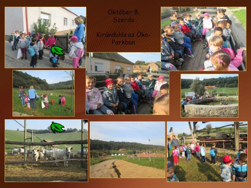 Október 8. Szerda Kirándulás az Öko- Parkban