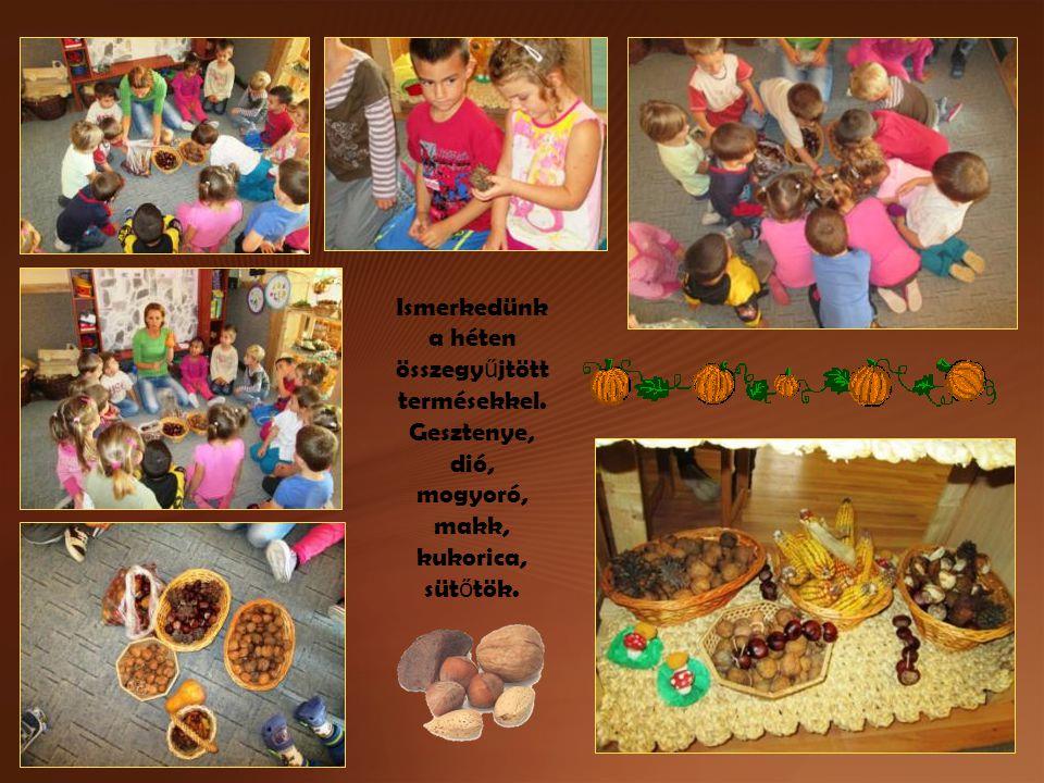 Ismerkedünk a héten összegy ű jtött termésekkel. Gesztenye, dió, mogyoró, makk, kukorica, süt ő tök.