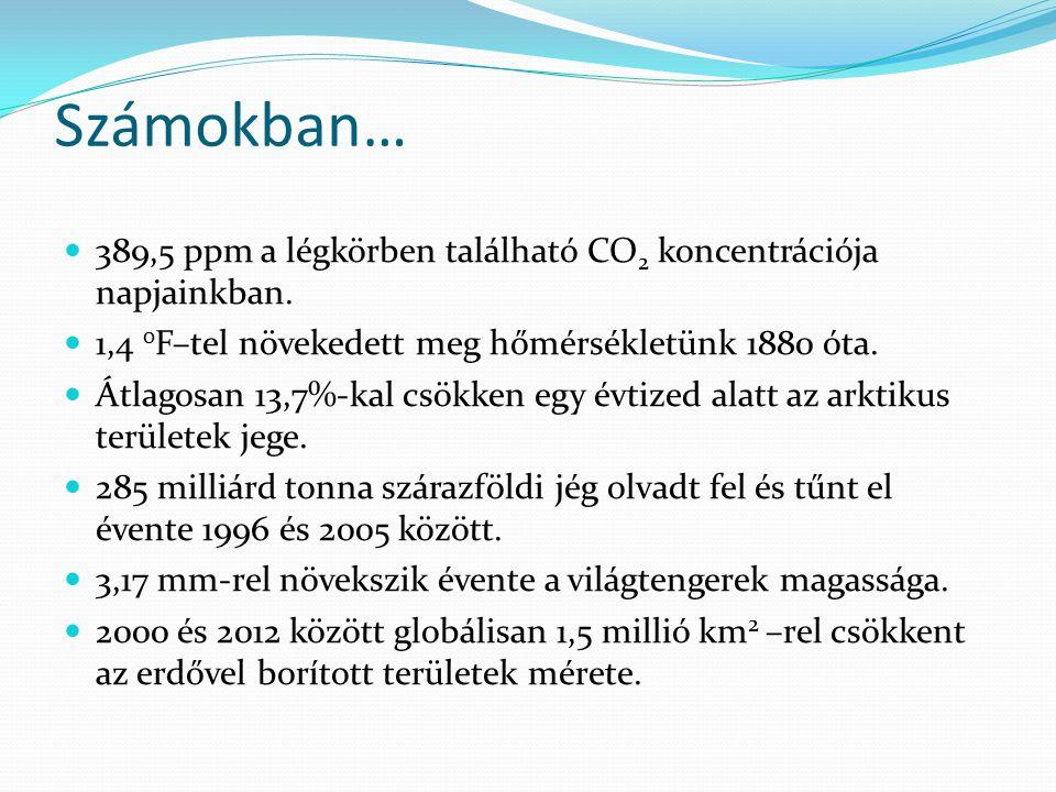 Számokban… 389,5 ppm a légkörben található CO 2 koncentrációja napjainkban. 1,4 0 F–tel növekedett meg hőmérsékletünk 1880 óta. Átlagosan 13,7%-kal cs