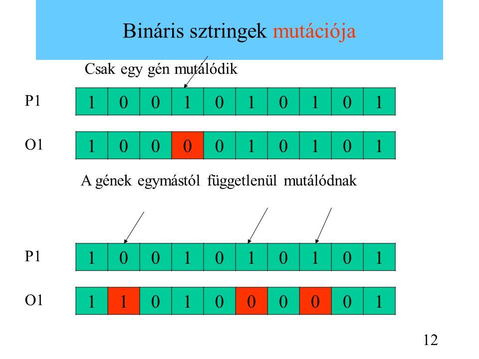 Bináris sztringek mutációja 1001010101 1000010101 1001010101 1101000001 Csak egy gén mutálódik A gének egymástól függetlenül mutálódnak P1 O1 P1 O1 12