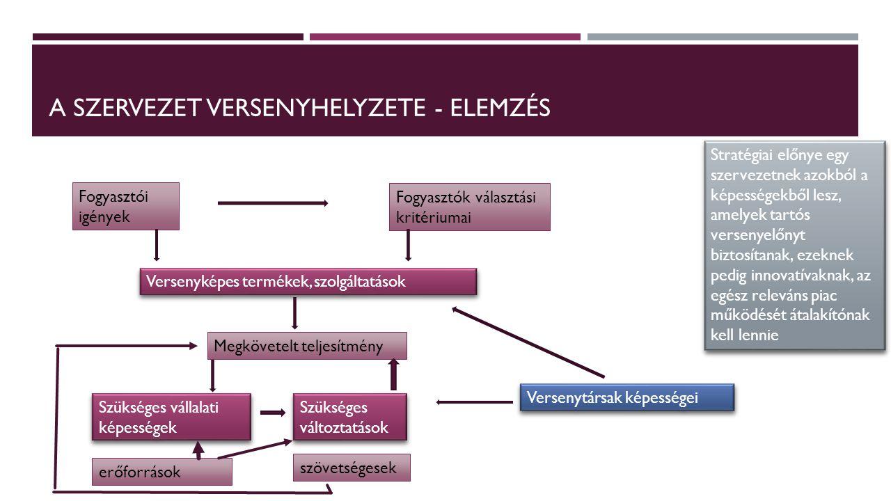 A SZERVEZET VERSENYHELYZETE - ELEMZÉS Fogyasztói igények Fogyasztók választási kritériumai Versenyképes termékek, szolgáltatások Megkövetelt teljesítm