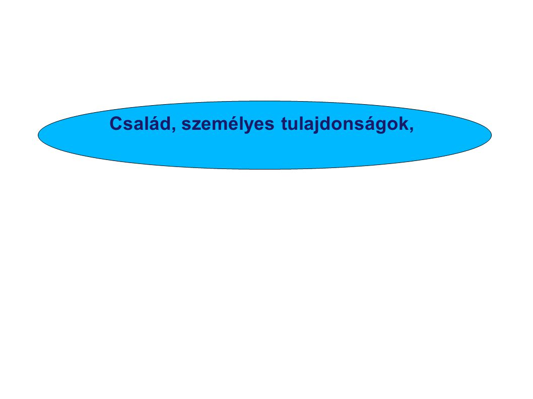 Vitéz János Hunyadi János V. László Ifjúsága