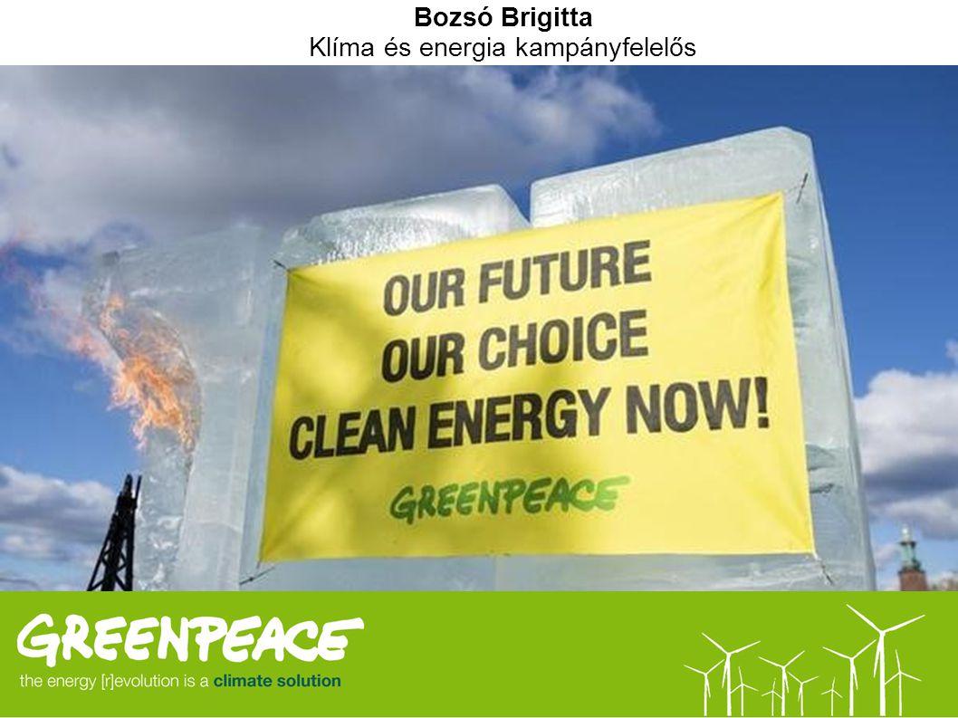 Bozsó Brigitta Klíma és energia kampányfelelős