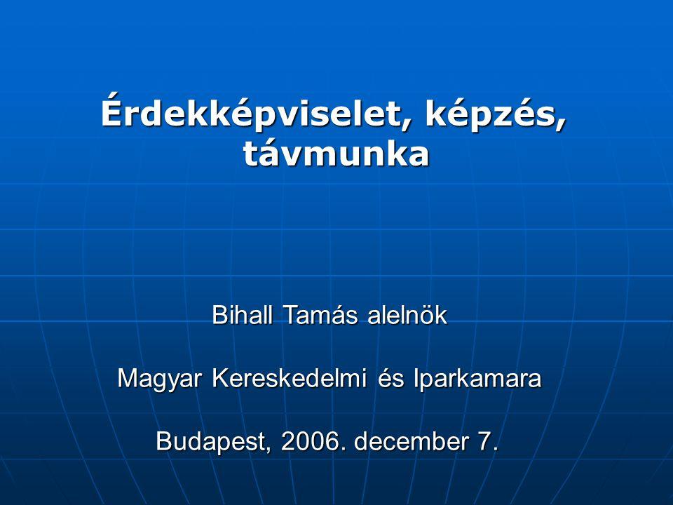 Érdekképviselet, képzés, távmunka Bihall Tamás alelnök Magyar Kereskedelmi és Iparkamara Budapest, 2006.