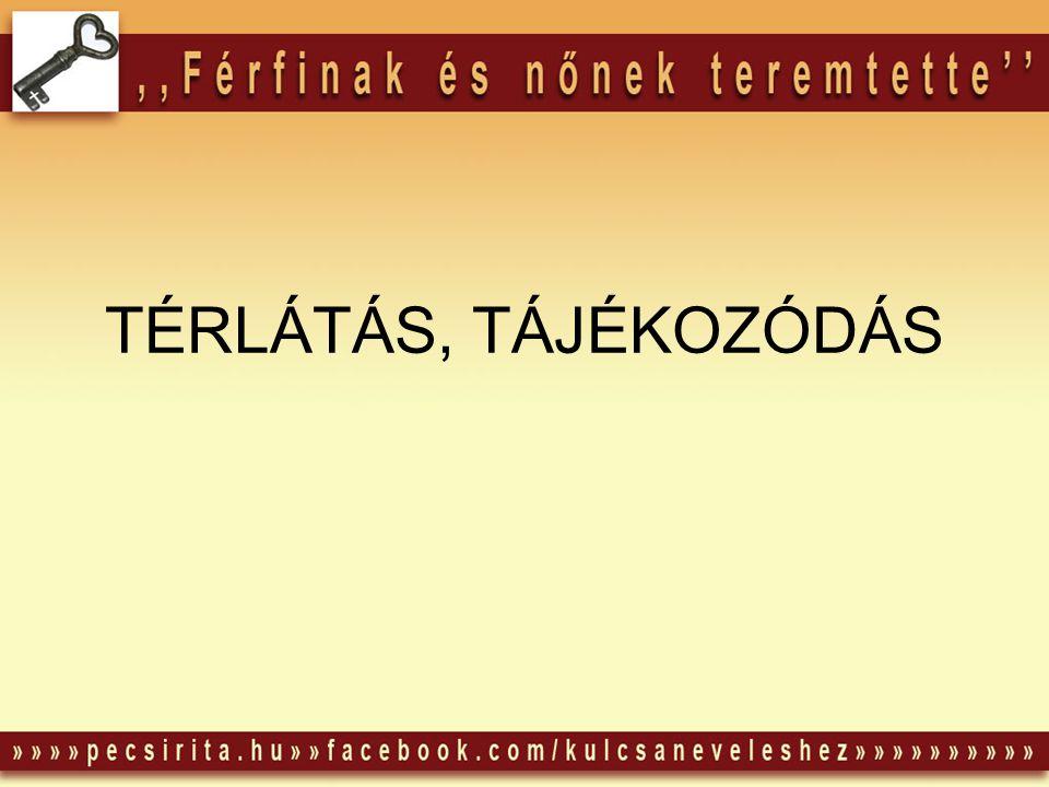 TÉRLÁTÁS, TÁJÉKOZÓDÁS