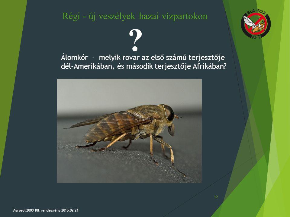 Régi - új veszélyek hazai vízpartokon ? Agrosol 2000 Kft rendezvény 2015.02.24 12 Álomkór - melyik rovar az első számú terjesztője dél-Amerikában, és