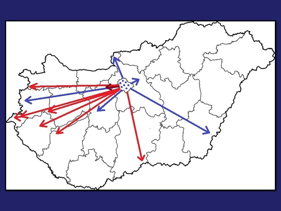 Hálózatos szakmai együttműködés I.