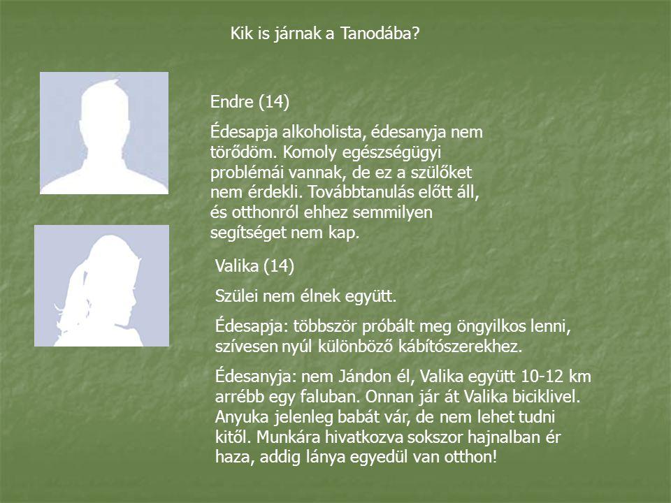 Kik is járnak a Tanodába.Endre (14) Édesapja alkoholista, édesanyja nem törődöm.