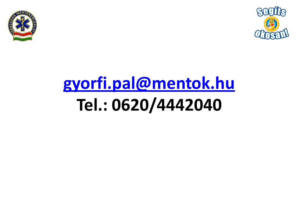 gyorfi.pal@mentok.hu gyorfi.pal@mentok.hu Tel.: 0620/4442040