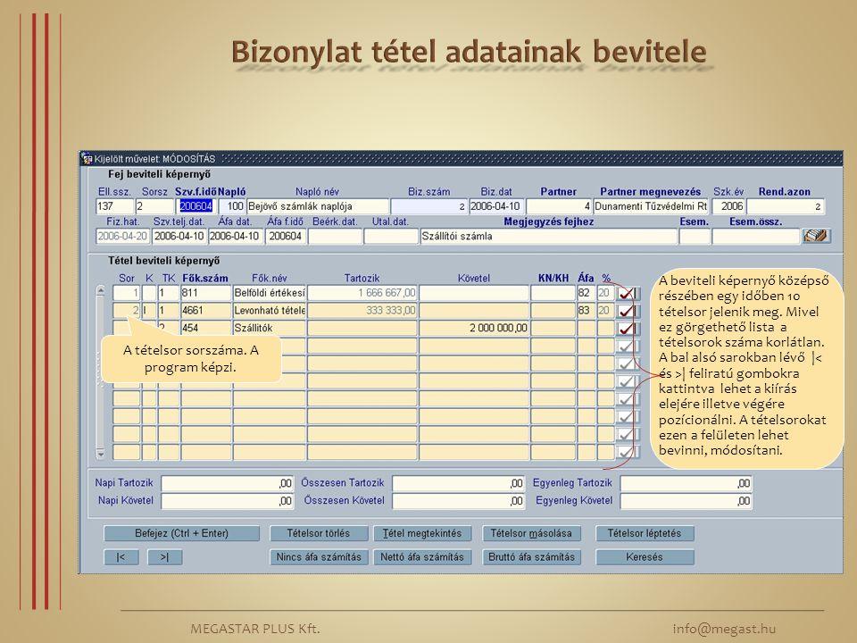 MEGASTAR PLUS Kft. info@megast.hu A tételsor sorszáma. A program képzi. A beviteli képernyő középső részében egy időben 10 tételsor jelenik meg. Mivel