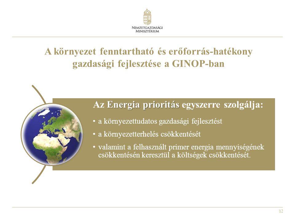12 A környezet fenntartható és erőforrás-hatékony gazdasági fejlesztése a GINOP-ban Energia prioritás Az Energia prioritás egyszerre szolgálja: a környezettudatos gazdasági fejlesztést a környezetterhelés csökkentését valamint a felhasznált primer energia mennyiségének csökkentésén keresztül a költségek csökkentését.