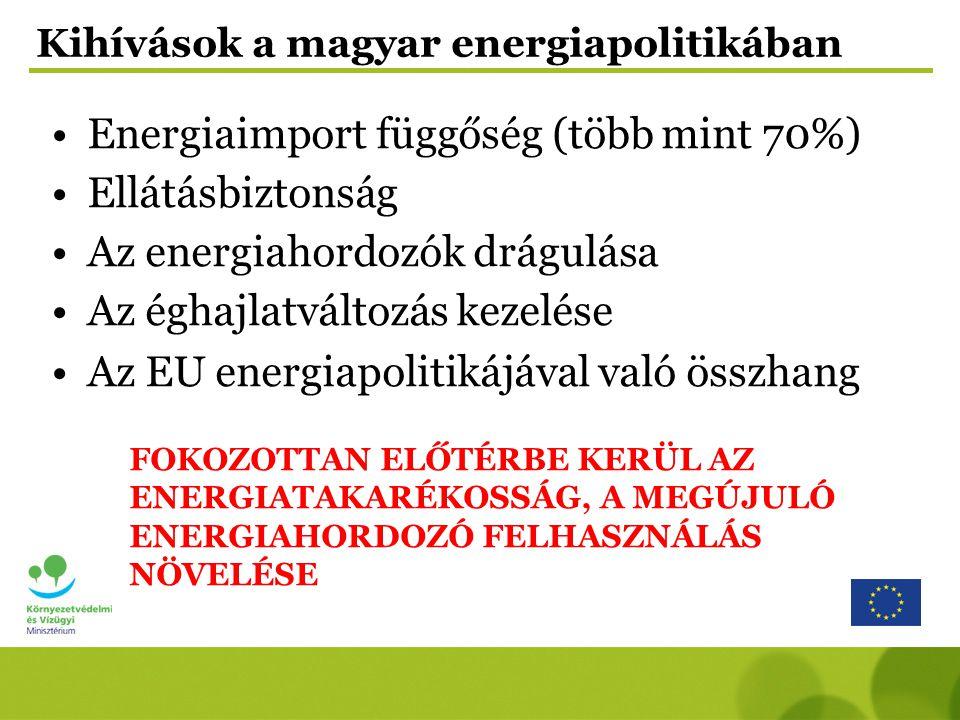 Kihívások a magyar energiapolitikában Energiaimport függőség (több mint 70%) Ellátásbiztonság Az energiahordozók drágulása Az éghajlatváltozás kezelés