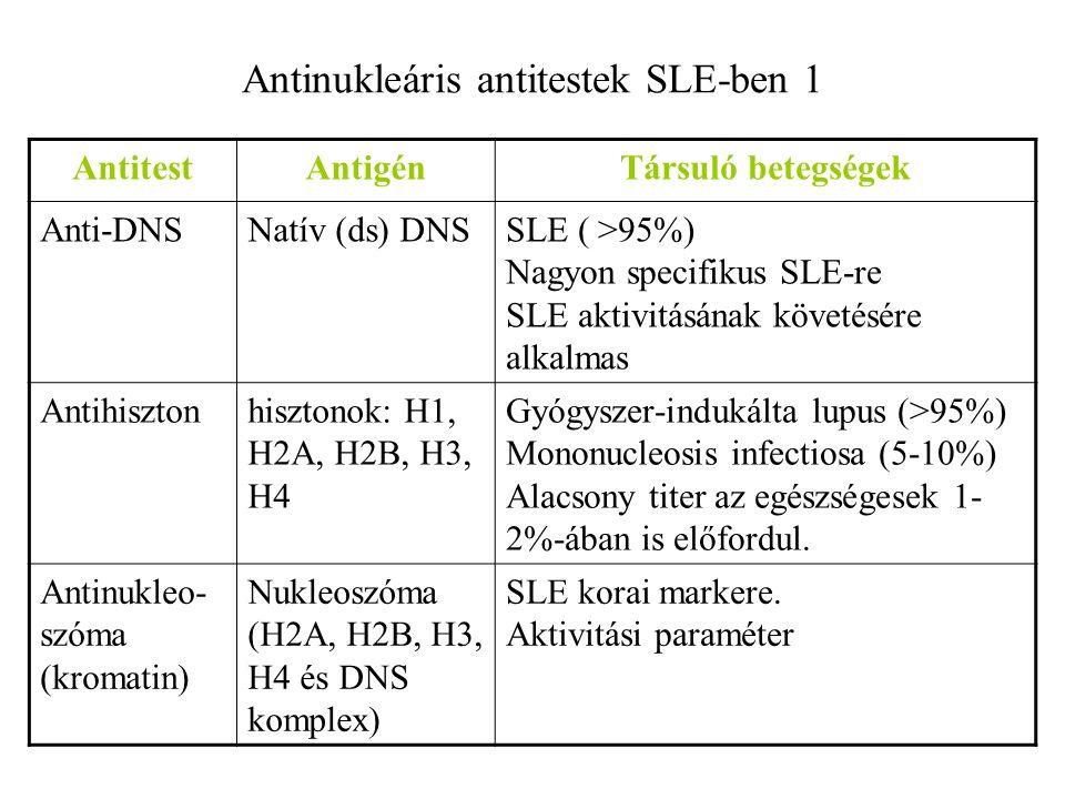 Antinukleáris antitestek SLE-ben 1 AntitestAntigénTársuló betegségek Anti-DNSNatív (ds) DNSSLE ( >95%) Nagyon specifikus SLE-re SLE aktivitásának köve