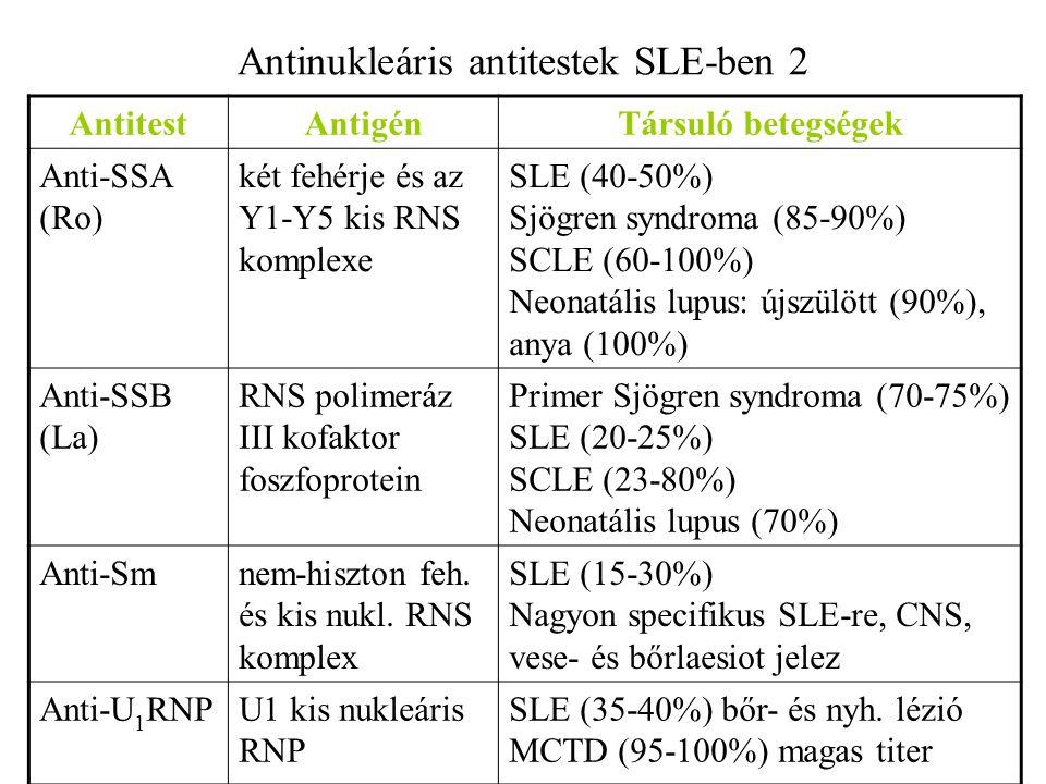Antinukleáris antitestek SLE-ben 2 AntitestAntigénTársuló betegségek Anti-SSA (Ro) két fehérje és az Y1-Y5 kis RNS komplexe SLE (40-50%) Sjögren syndr