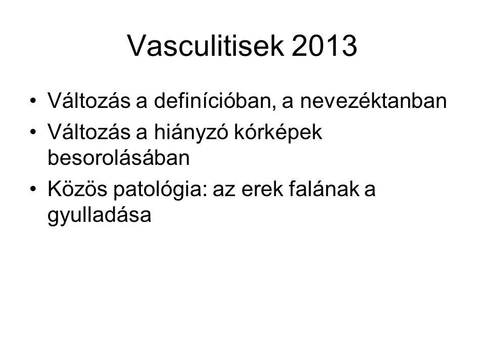 Vasculitisek 2013 Változás a definícióban, a nevezéktanban Változás a hiányzó kórképek besorolásában Közös patológia: az erek falának a gyulladása