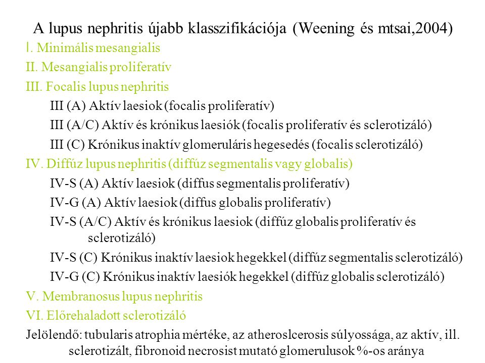 A lupus nephritis újabb klasszifikációja (Weening és mtsai,2004) I. Minimális mesangialis II. Mesangialis proliferatív III. Focalis lupus nephritis II