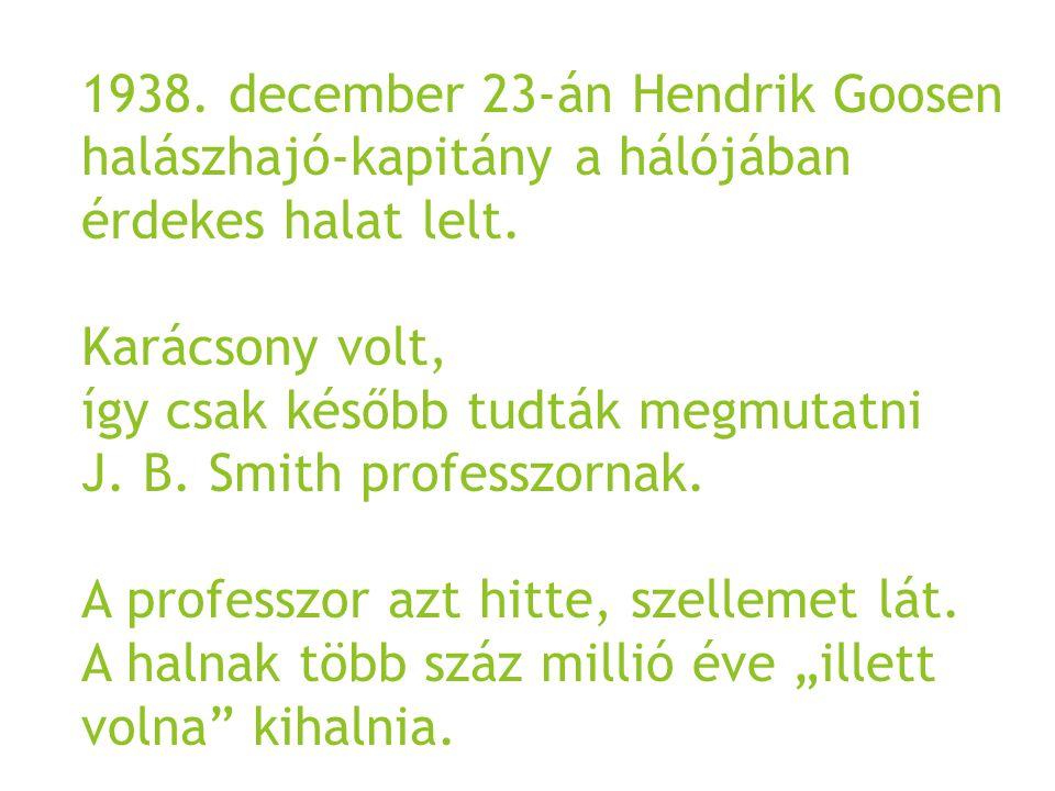 1938. december 23-án Hendrik Goosen halászhajó-kapitány a hálójában érdekes halat lelt. Karácsony volt, így csak később tudták megmutatni J. B. Smith
