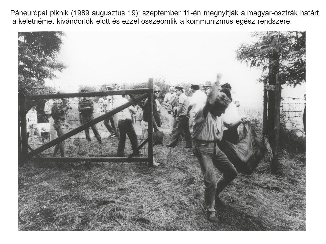 Páneurópai piknik (1989 augusztus 19): szeptember 11-én megnyitják a magyar-osztrák határt a keletnémet kivándorlók elött és ezzel összeomlik a kommunizmus egész rendszere.