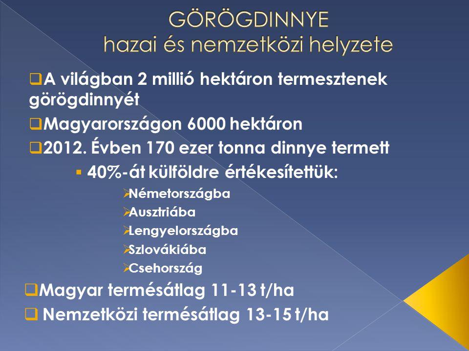  A világban 2 millió hektáron termesztenek görögdinnyét  Magyarországon 6000 hektáron  2012. Évben 170 ezer tonna dinnye termett  40%-át külföldre