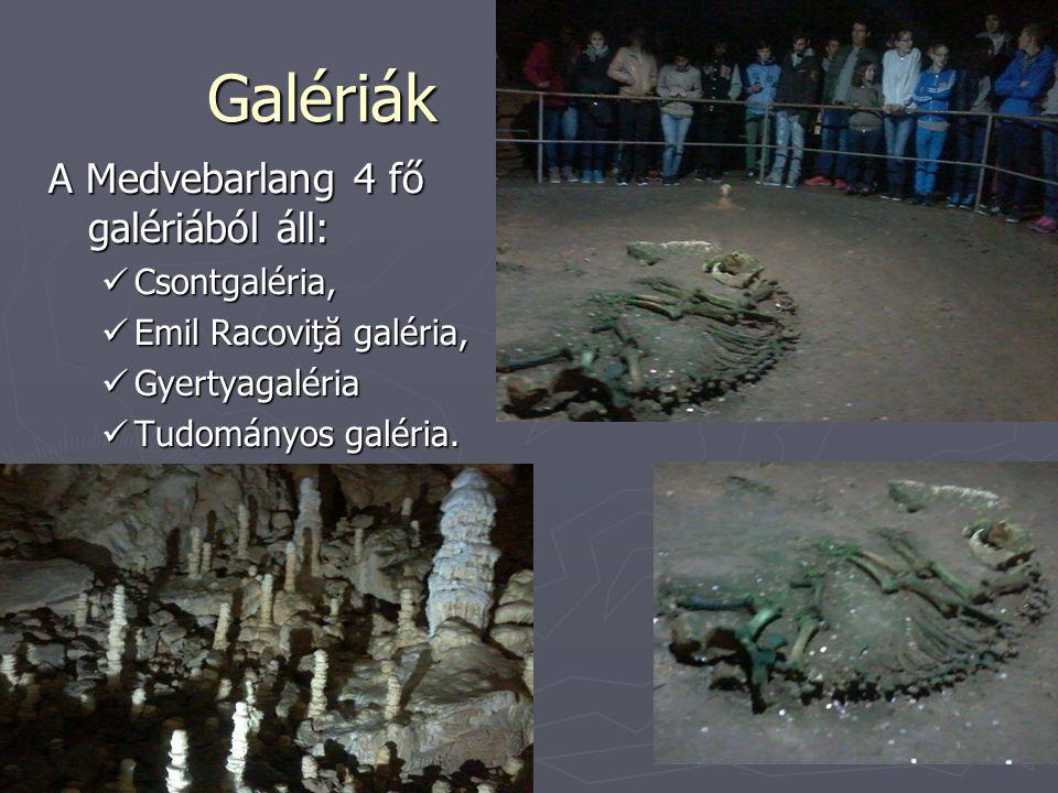 Galériák A Medvebarlang 4 fő galériából áll: Csontgaléria, Csontgaléria, Emil Racoviţă galéria, Emil Racoviţă galéria, Gyertyagaléria Gyertyagaléria Tudományos galéria.