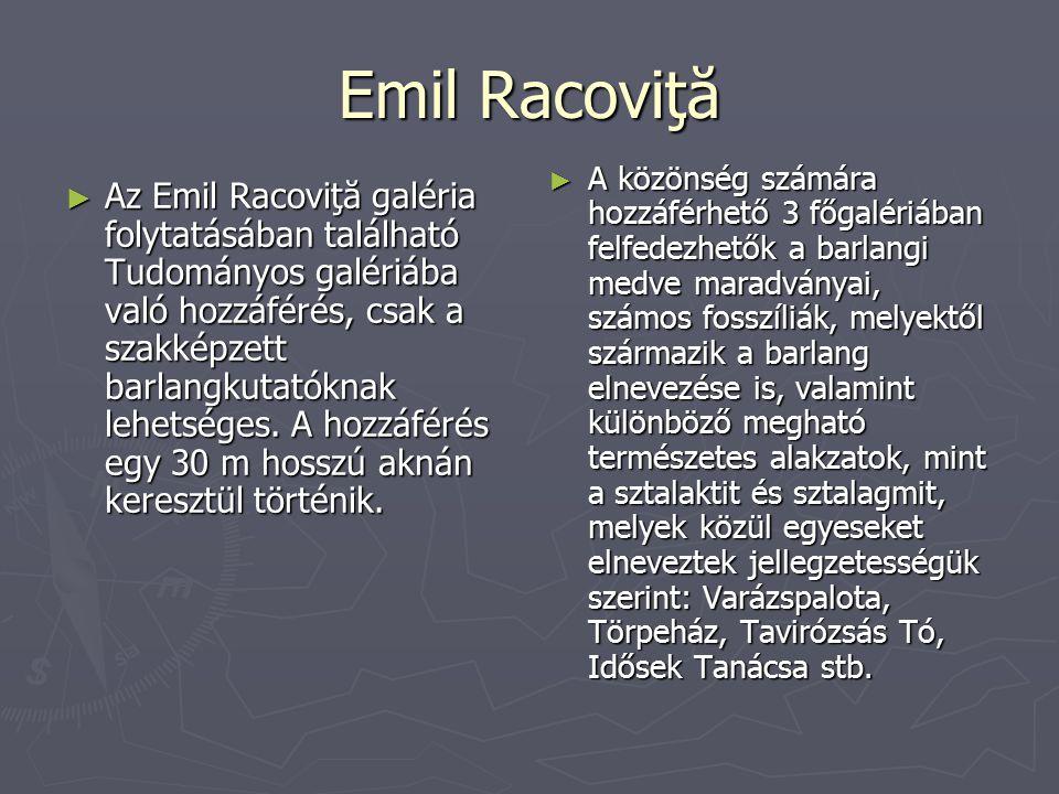 Emil Racoviţă ► Az Emil Racoviţă galéria folytatásában található Tudományos galériába való hozzáférés, csak a szakképzett barlangkutatóknak lehetséges.