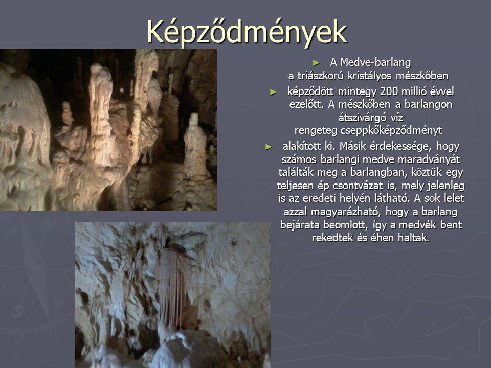 Képződmények ► A Medve-barlang a triászkorú kristályos mészkőben ► képződött mintegy 200 millió évvel ezelőtt. A mészkőben a barlangon átszivárgó víz