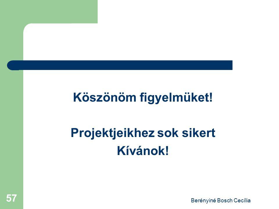 Berényiné Bosch Cecília 57 Köszönöm figyelmüket! Projektjeikhez sok sikert Kívánok!