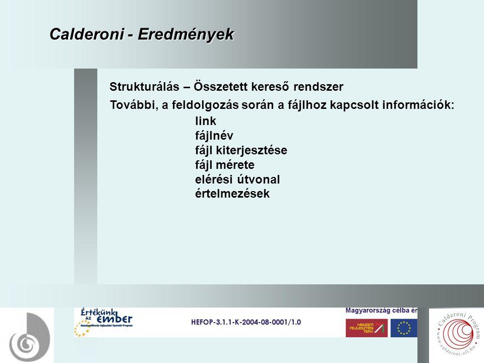 11 Calderoni - Eredmények Strukturálás – Összetett kereső rendszer További, a feldolgozás során a fájlhoz kapcsolt információk: link fájlnév fájl kiterjesztése fájl mérete elérési útvonal értelmezések