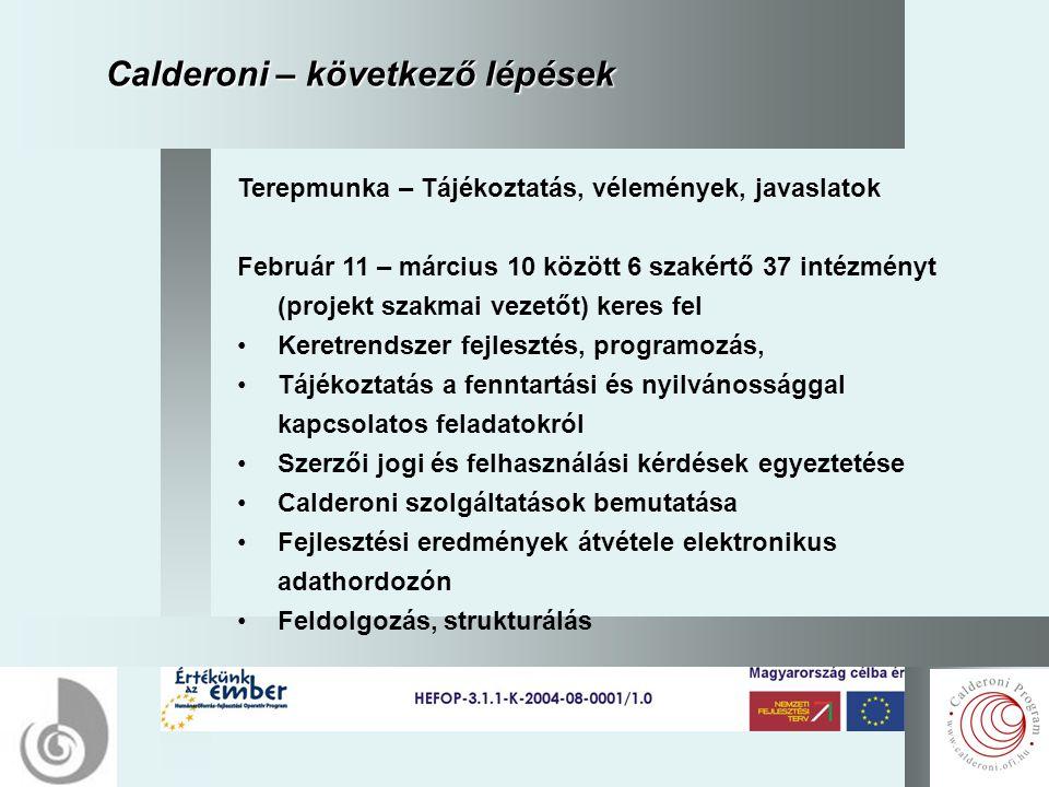 12 Calderoni – következő lépések Terepmunka – Tájékoztatás, vélemények, javaslatok Február 11 – március 10 között 6 szakértő 37 intézményt (projekt szakmai vezetőt) keres fel Keretrendszer fejlesztés, programozás, Tájékoztatás a fenntartási és nyilvánossággal kapcsolatos feladatokról Szerzői jogi és felhasználási kérdések egyeztetése Calderoni szolgáltatások bemutatása Fejlesztési eredmények átvétele elektronikus adathordozón Feldolgozás, strukturálás