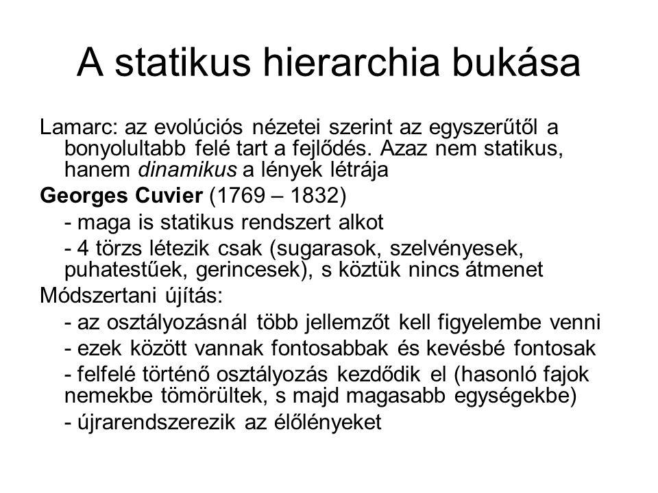 A statikus hierarchia bukása Lamarc: az evolúciós nézetei szerint az egyszerűtől a bonyolultabb felé tart a fejlődés. Azaz nem statikus, hanem dinamik
