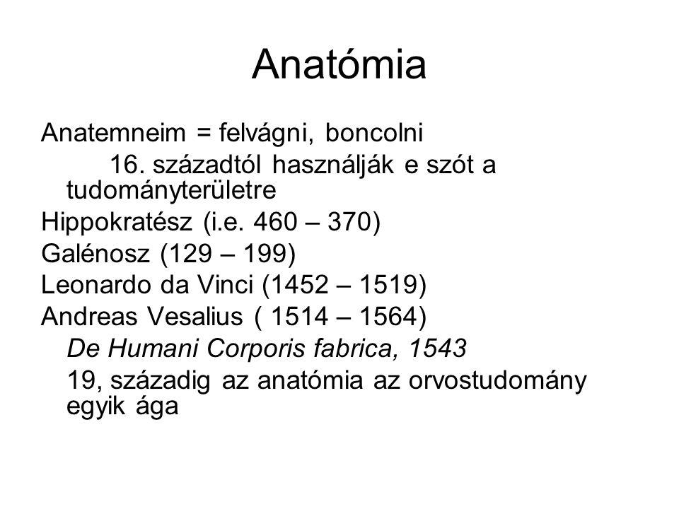 Anatómia Anatemneim = felvágni, boncolni 16. századtól használják e szót a tudományterületre Hippokratész (i.e. 460 – 370) Galénosz (129 – 199) Leonar