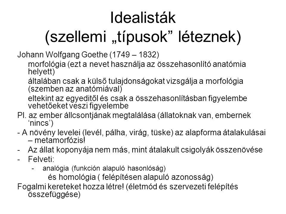 """Idealisták (szellemi """"típusok"""" léteznek) Johann Wolfgang Goethe (1749 – 1832) morfológia (ezt a nevet használja az összehasonlító anatómia helyett) ál"""